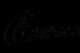 logo-noemi-g-carrasco-pintora-firma